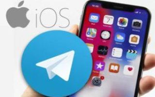 Telegram on IPhone and iPad: download and install